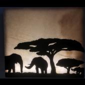 """Wandbild Afrika """"Herde"""""""